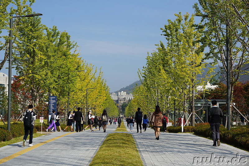 Campus der Yonsei University in Seoul, Korea