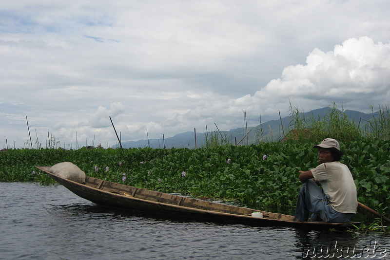 Floating Gardens auf dem Inle Lake, Myanmar