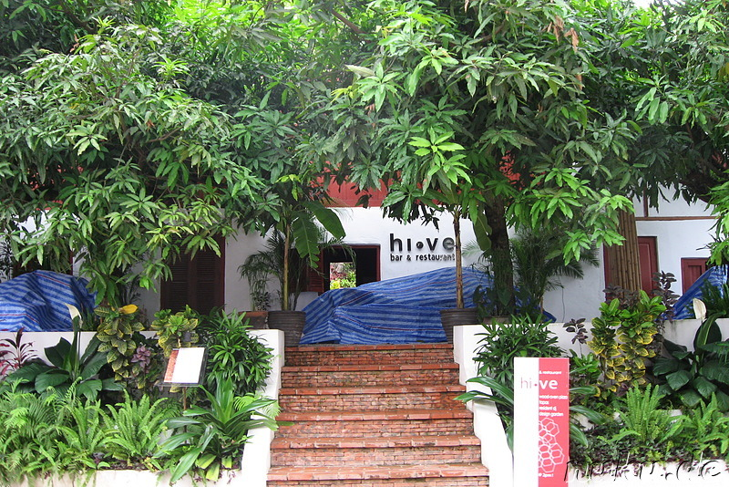Hive Bar in Luang Prabang