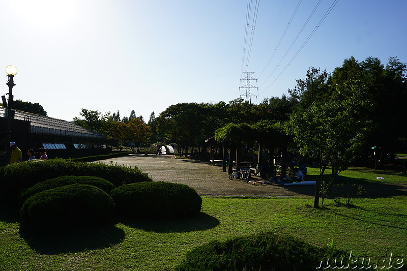 Incheon Grand Park (인천대공원) in Incheon, Korea