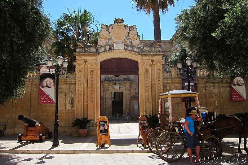 National Museum of Natural History in Mdina, Malta