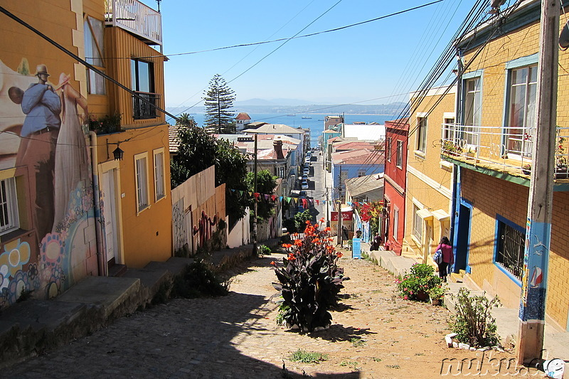PataPata Hostel in Valparaiso, Chile