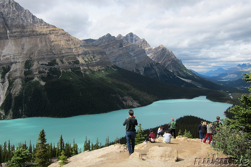 Peyto Lake im Banff National Park, Kanada