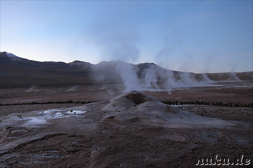 Tatio Geisers in der Atacamawueste, Chile