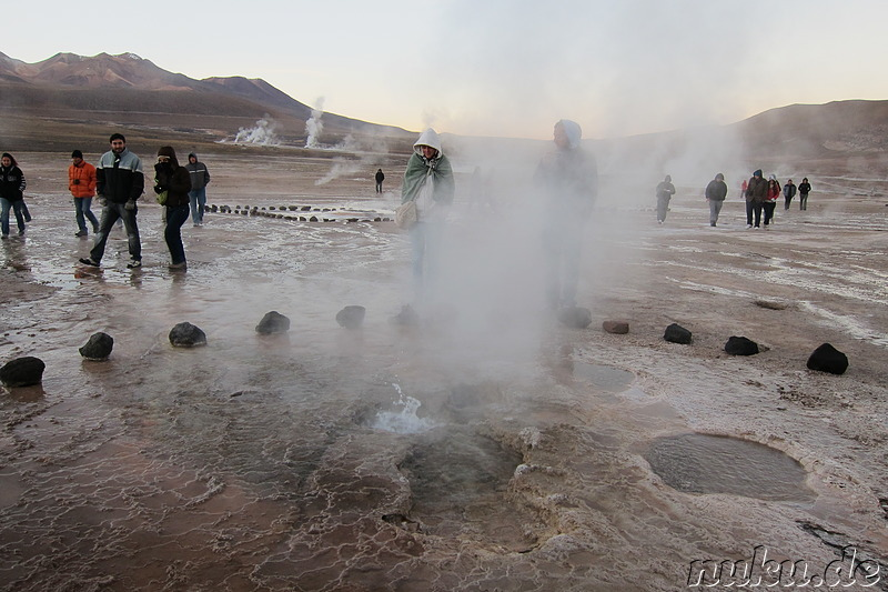 Tatio Geisers in der Atacamawüste, Chile