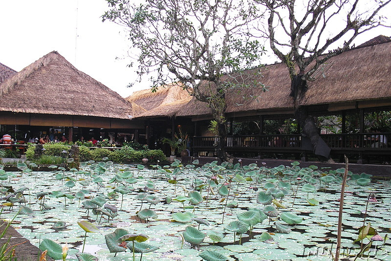 Cafe Lotus am Pura Taman Saraswati Tempel in Ubud
