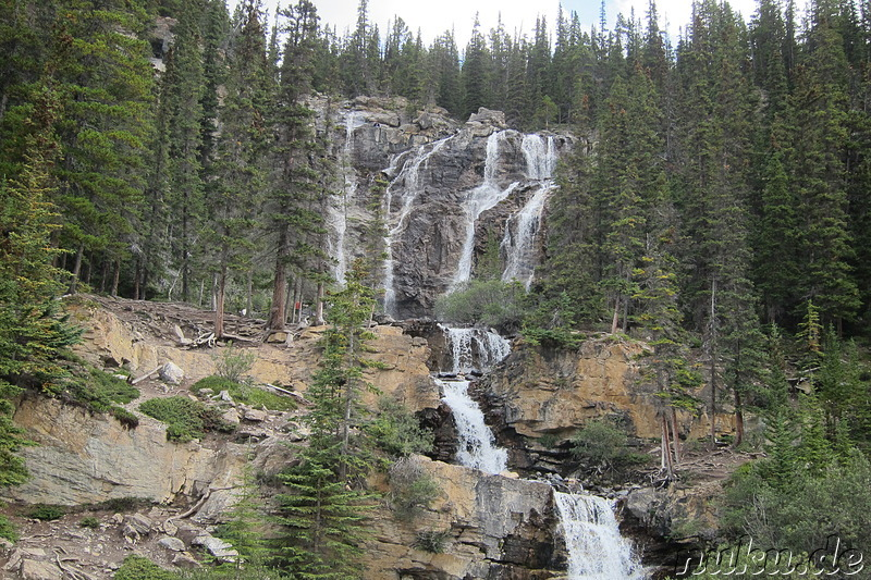 Tangle Creek Falls - Wasserfall im Jasper National Park, Kanada